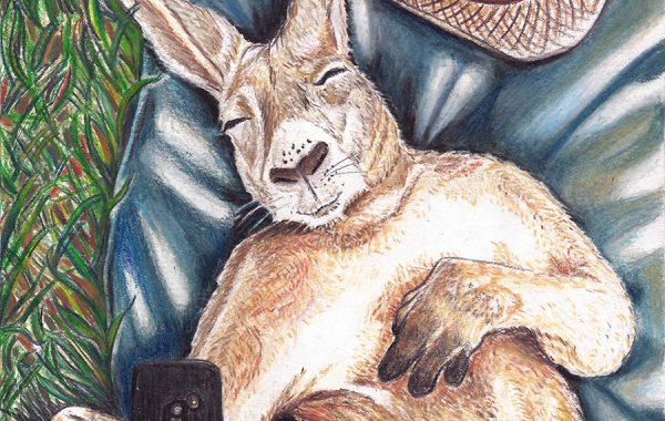 Autoscatto (canguro)